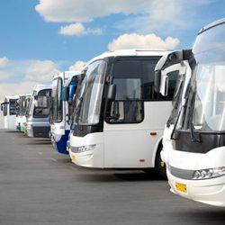 group-transportation-services (1)